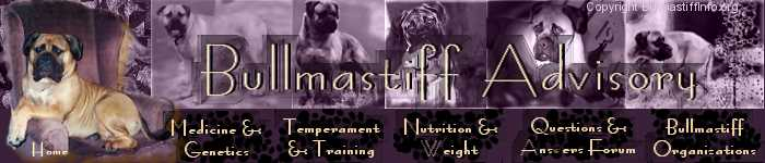 Bullmastiff Advisory - Bullmastiff Owner Support When You Need It!