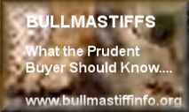 Bullmastiffs - What the Prudent Buyer Should Know...